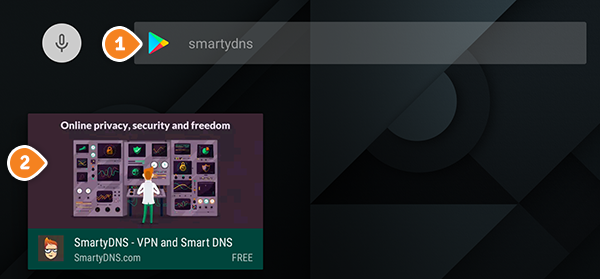How to set up SmartyDNS App for Android TV: Step 1