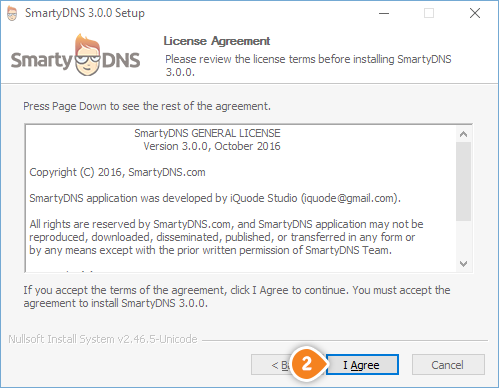 How to set up SmartyDNS App for Windows: Step 2